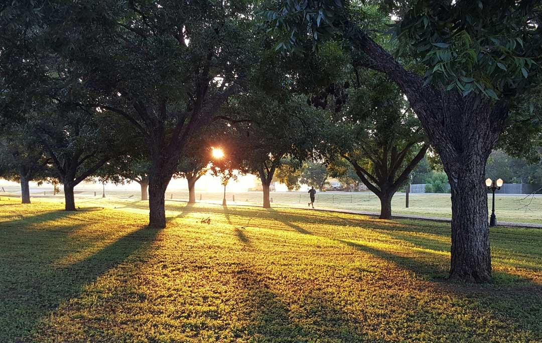 Laufen bei Sonne in einem kölner Park