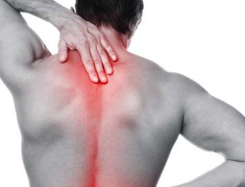 Rückenschmerzen – welche Rolle spielen Faszien?